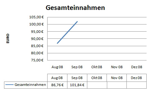 Einnahmen 2008