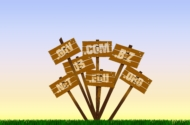 Bei Domains sind die Hüllen gefallen – für jeden Zweck die passende TLD