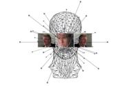 Der Algorithmus und seine Einsatzgebiete im Überblick