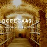Mit den Weinkühlschränken von BODEGA43 bekommen Sie Spitzenqualität in Ihr Zuhause